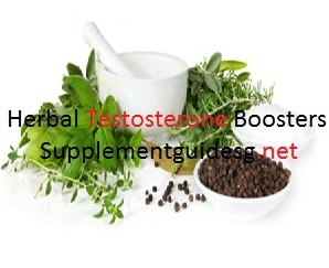 Top Herbal Testosterone Boosters
